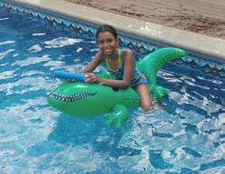 Conquering the crocodile