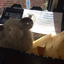 CCBa-Baa Sheep making Thursday School deliveries