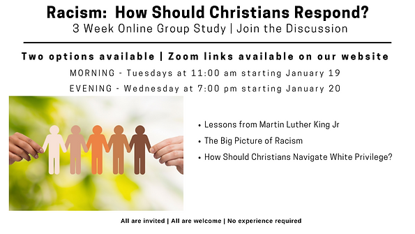 2021 Racism Study.FB Cover.Jan 13 21.png