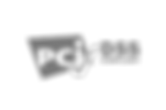 pci-dss-logo-408x270_edited.png