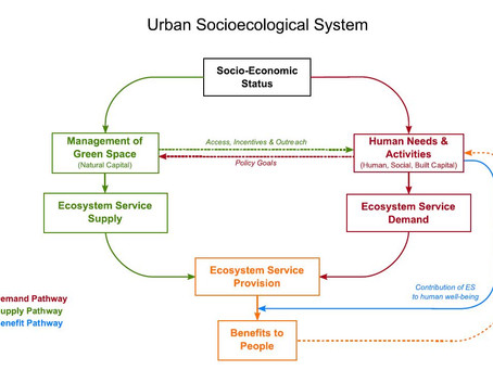New Paper: Social Factors and Urban Ecosystem Services