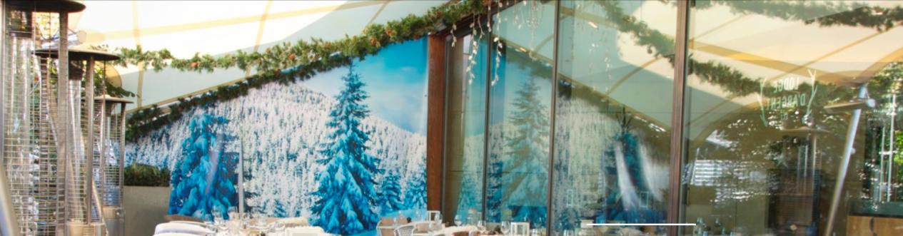 Lodge D'argent Winter Canopy