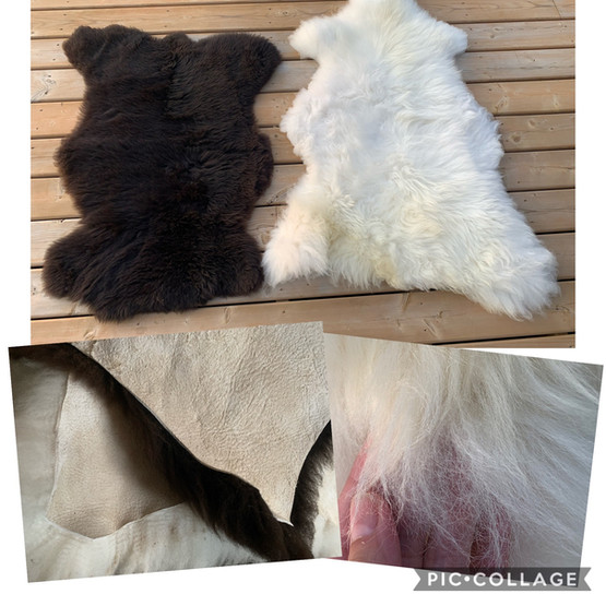 Sheep skin hides