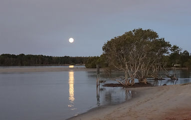 Moonrise at Settlement Point Ferry_PM.jp