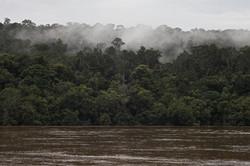 A morning in the Barito River