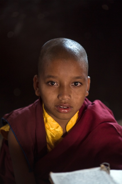 Young Monk - Nepal