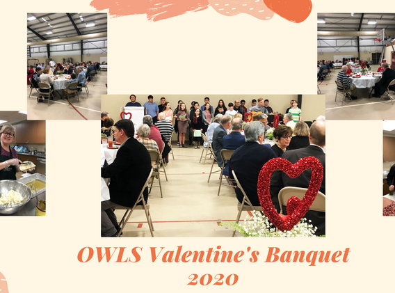 owls banquet collage.png