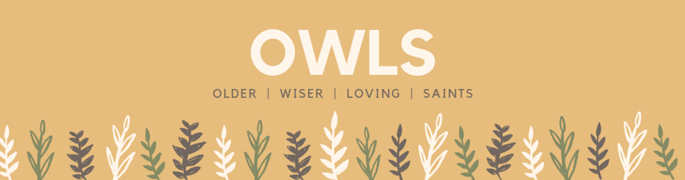 OWLS Banner.png