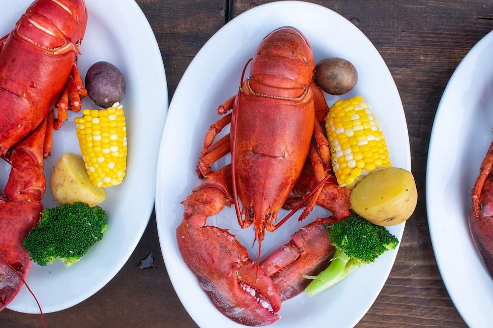 Wild Plum Catering Lobster