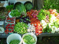 Earthly Delights Farm