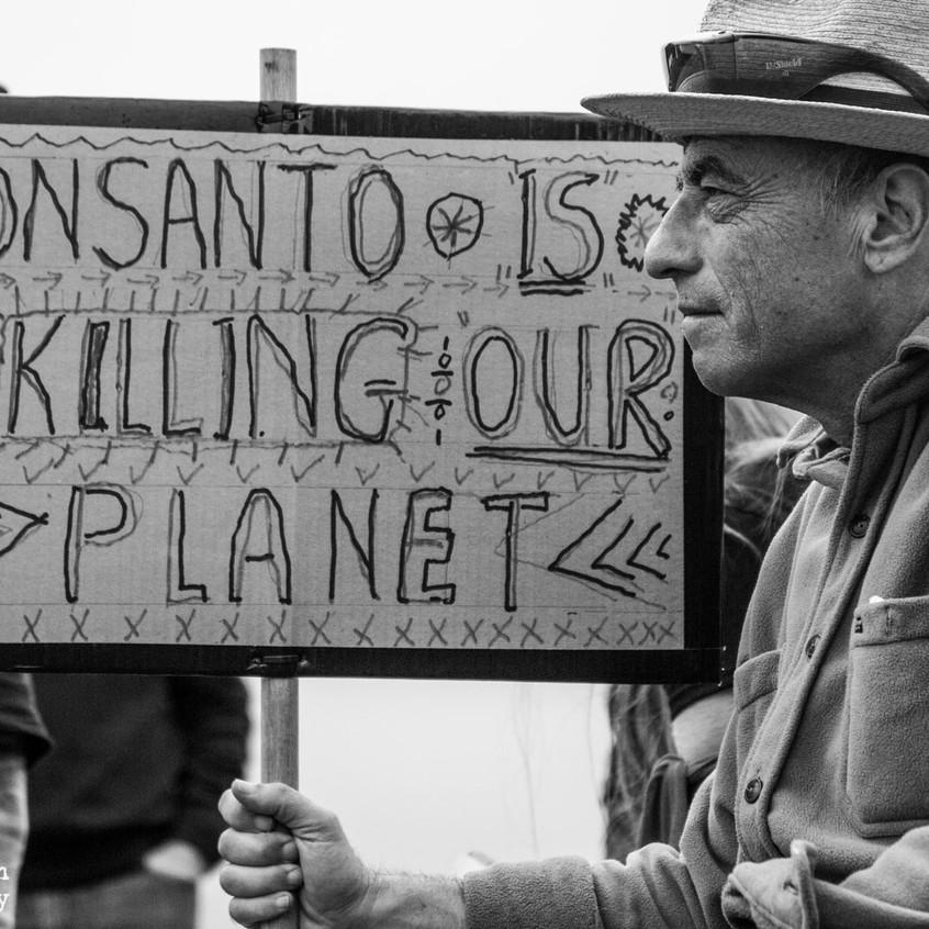 NO-GMO-MONSANTO-1-59