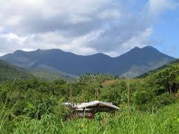 Babaeng Bukid