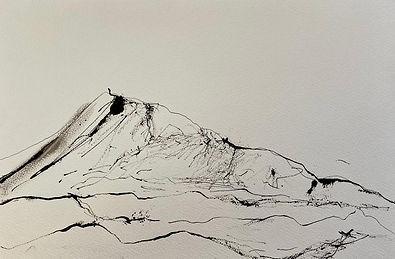Eaval 3 - 42cmx30cm - ink drawing.jpeg