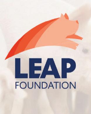 LEAP Foundation banner