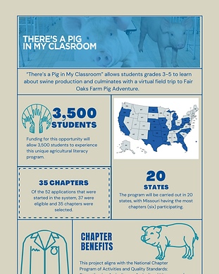 picture of There's A Pig in My Classroom infographic