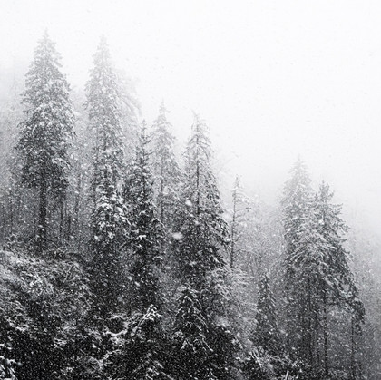 In a snowstorm