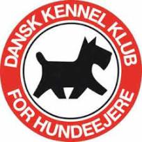 DKK2_srcset-large.png