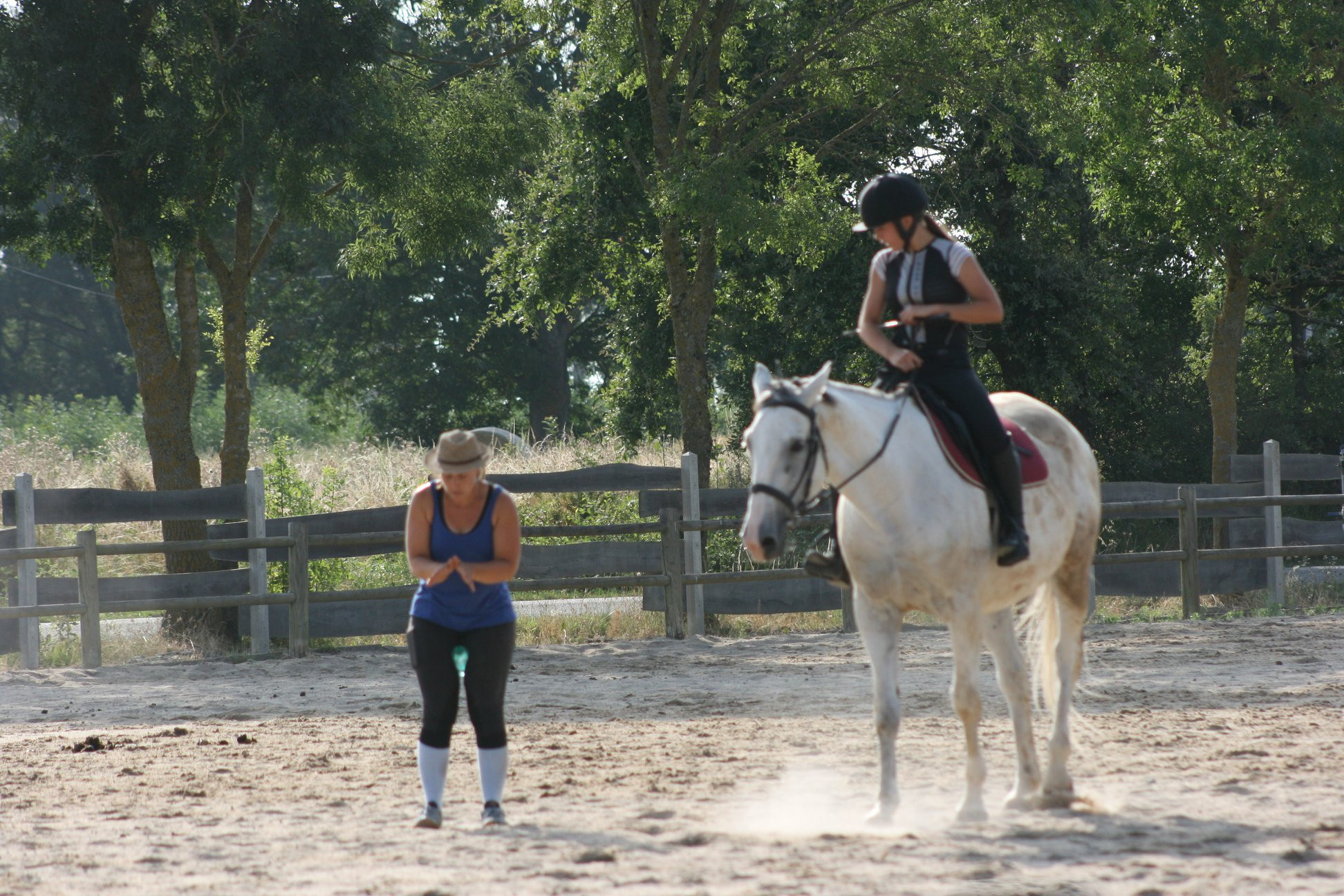 Cours Galop 4 - 5