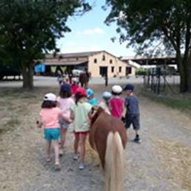 Camp fermier juillet 4 - 6 ans