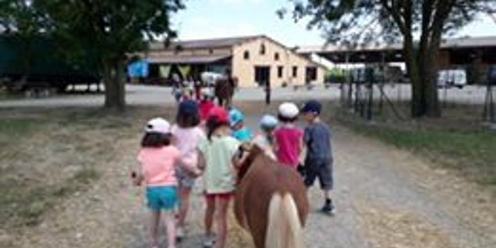 Camp fermier juillet week-end 6 - 12 ans