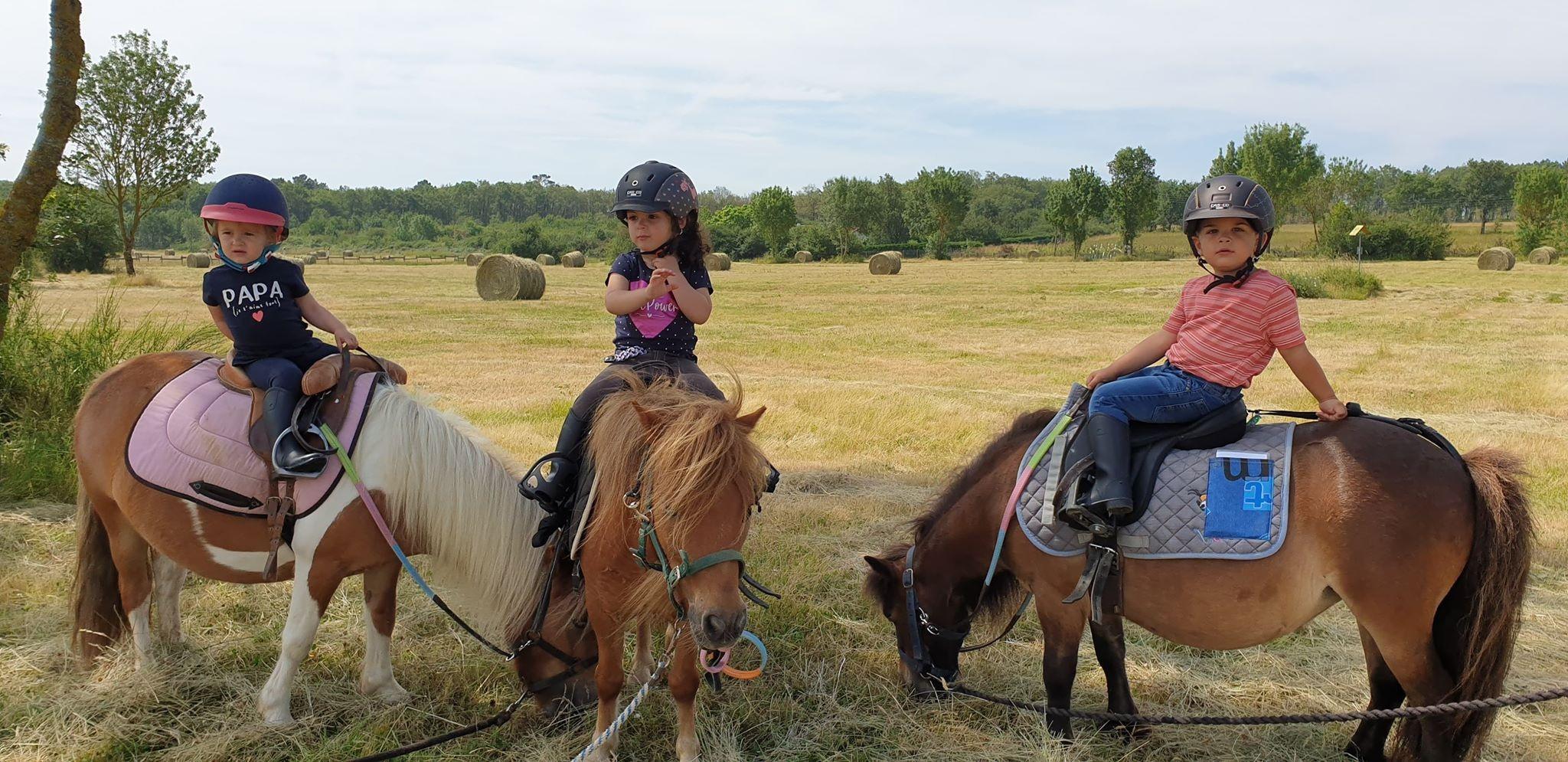 Cours Bébé poney expert