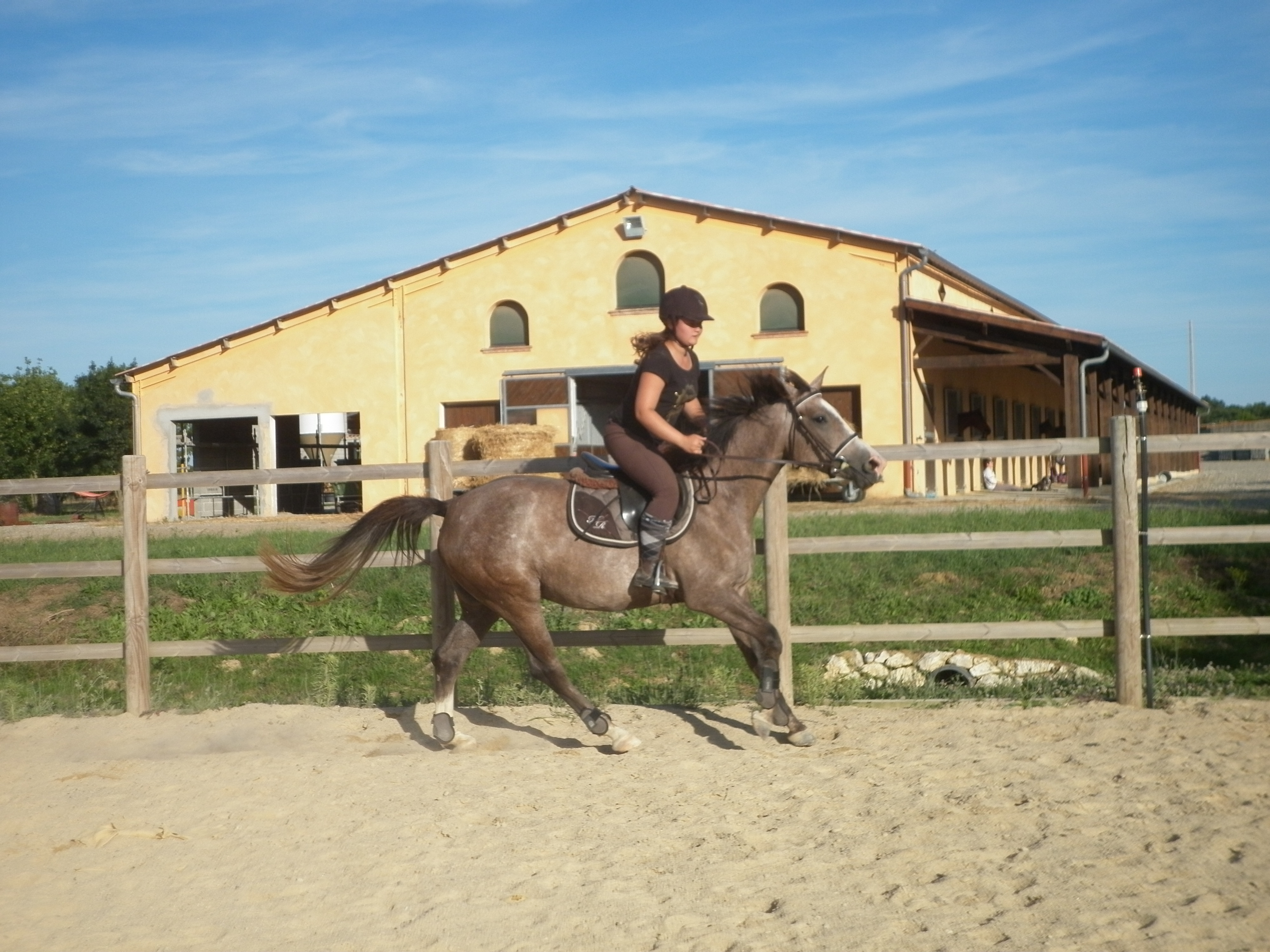 Cours Galop 3 - 4