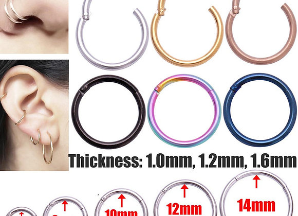 1PC: G23 Titanium: Hinged Segment Ring for Nose/ Tragus/ Helix/ Lip/16g or 14g