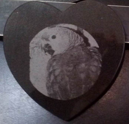 Pet Portrait on Granite Heart