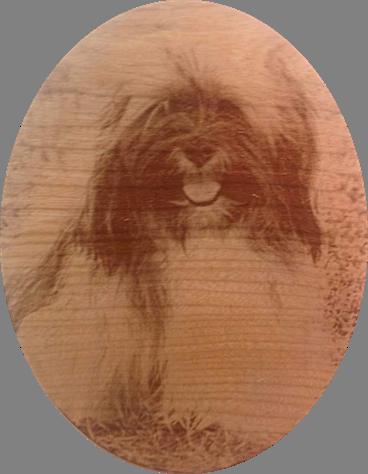 Pet Portrait on  Cherry Wood 5 x 7