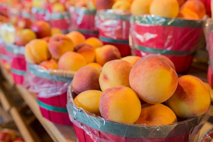 peach basket rows_Original.jpg