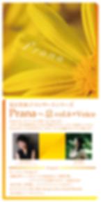 prana_DM_2019_表.png