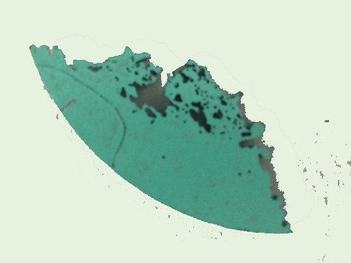 turquoise shape