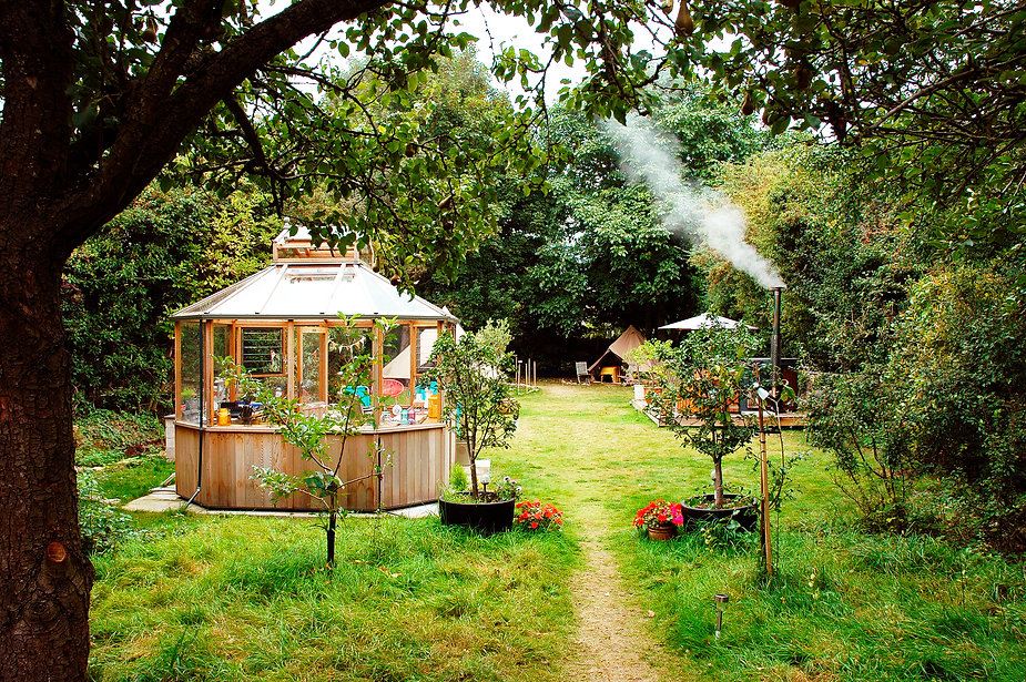 Site from yurt.JPG