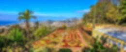 Madeira (10).jpg