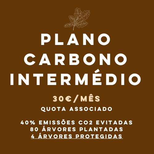 Plano Carbono Intermédio