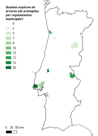 Quantas espécies de árvores são protegidas por regulamentos municipais?