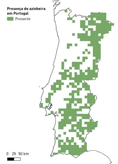 Distribuição da Azinheira em Portugal