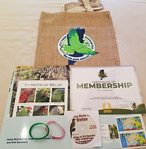 membership package.jpeg