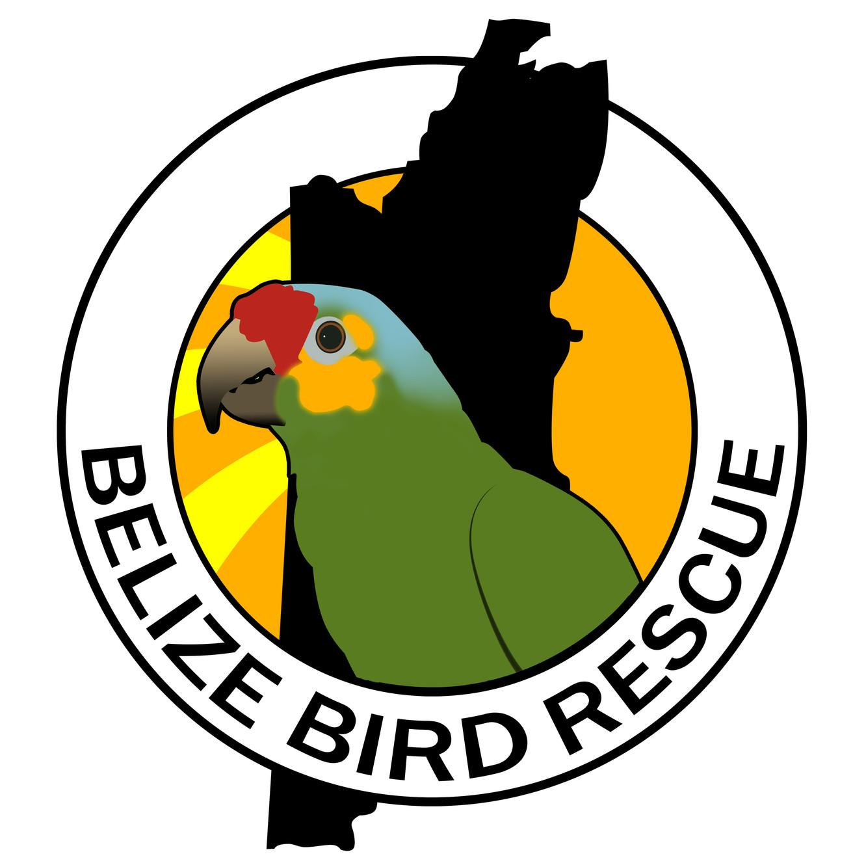 Belize Bird Rescue - Avian Rehabilitation Centre & Bird
