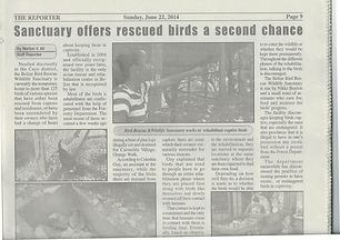 Reporter Newspaper - about BBR