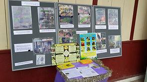 Belize Bird Rescue schools presentation