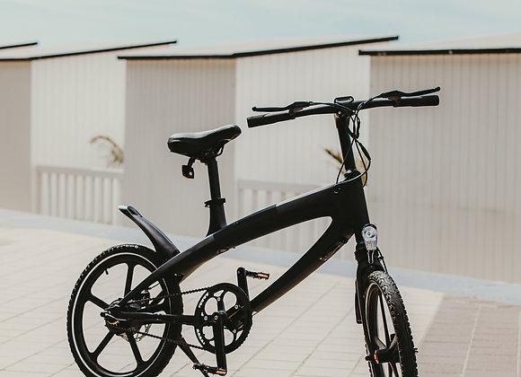 EZ Bike