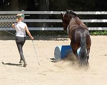 GiGi jumping barrel at Donna's.jpg