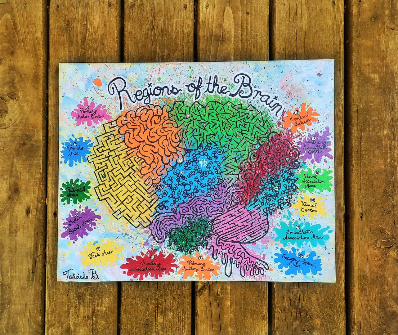 Regions of The Brain (2020)
