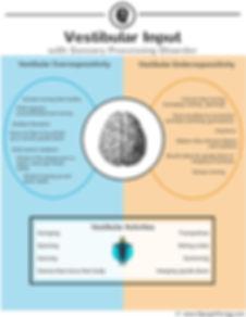 Vestibular Input