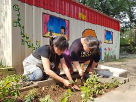 【園藝課程】 2021-04-03