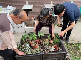 【園藝課程】 2021-05-01