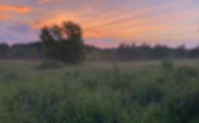 #summermagic #aftertherain #sunset.jpg