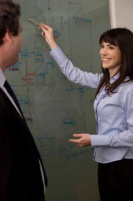 Consultants creating IT Soluton