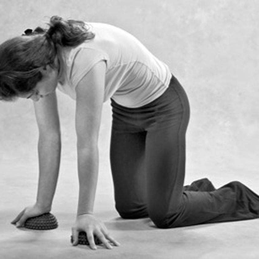 11/21 手から胸椎の動きを考察するヤムナワークショップ